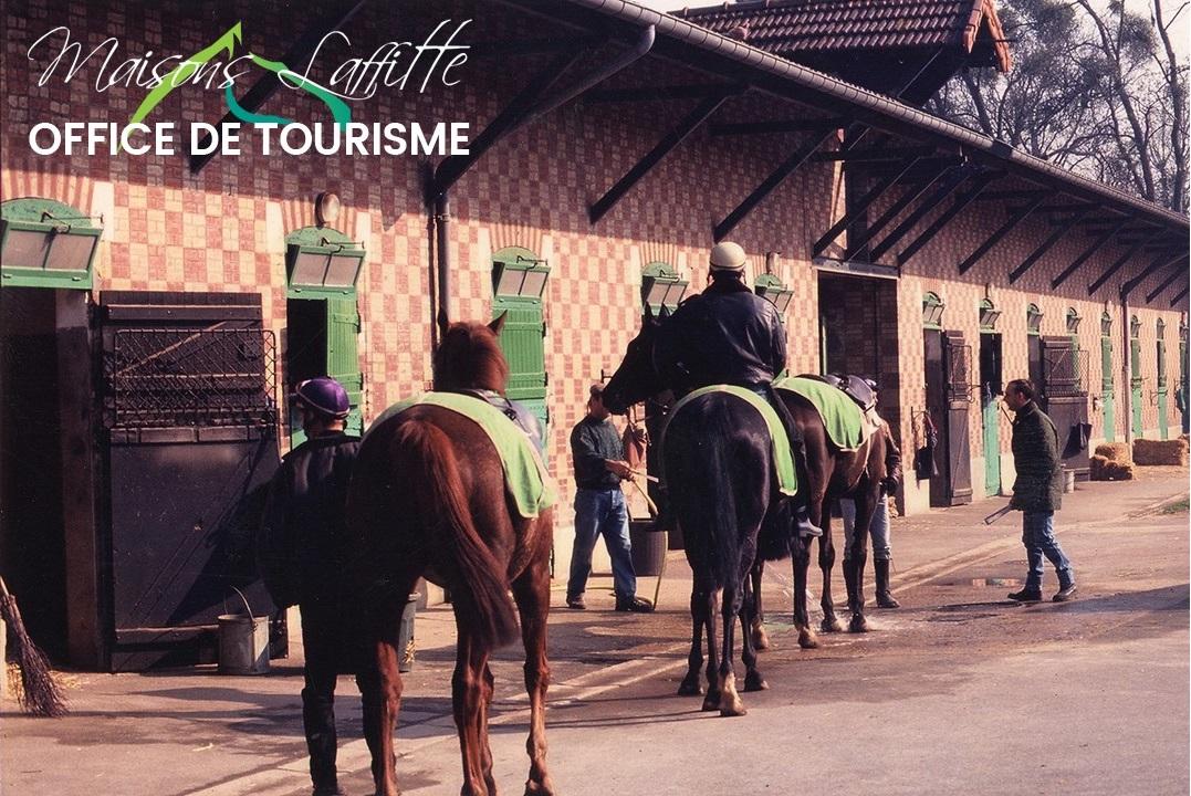 Visite-Découverte des cours d'écurie de chevaux de courses